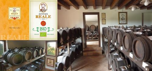 Visit the Balsamic farm and its Museum